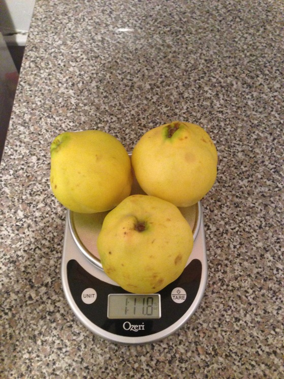 Quinces on a scale.
