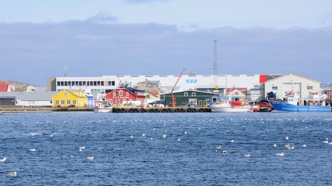 Siglufjörður harbor