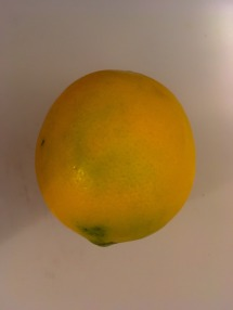 A delicious, ripe Meyer lemon