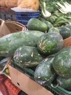 large squash