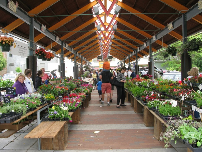 A shot of the flower and herbs aisle at Findlay Farmer's Market in Cincinnati, Ohio, with a man carrying a child on his shoulders surrounded by nasturtiums, herbs, and rosemary in pots.
