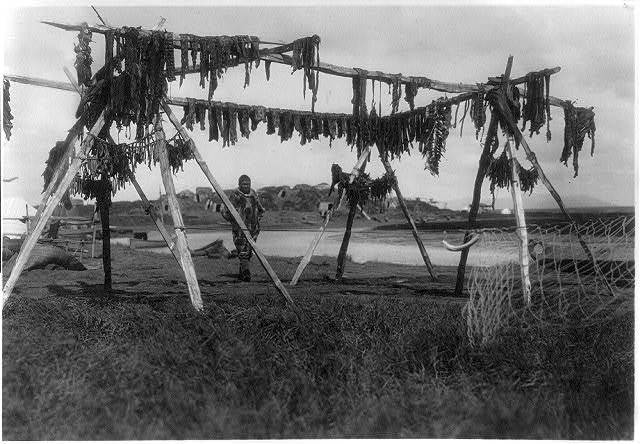 Black and white photo of a man in a fur parka standing under a wooden structure with drying meat hanging from the wood. The structure and man are on a grassy-muddy field.