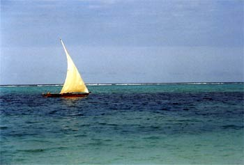 A sailing dhow on blue waters